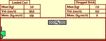 Momentum - Mrs Roches Physics I I